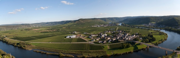 Moselle-panorama